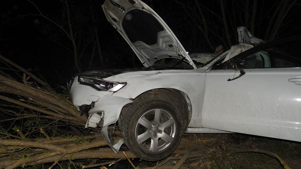 На трассе Дубна - Кимры  ВАЗ сбил лося и врезался в Audi A6, в ДТП погиб водитель