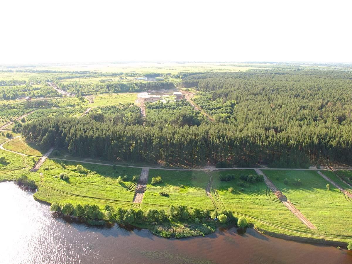 В Кимрском районе утверждены границы четырех лесов - памятников природы